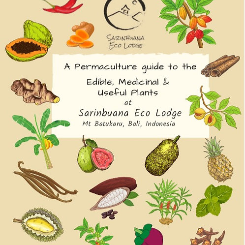 A Permaculture guide to the plants at Sarinbuana Eco Lodge