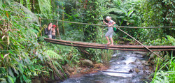Overland Farm and Forest Treks 3-5 hrs