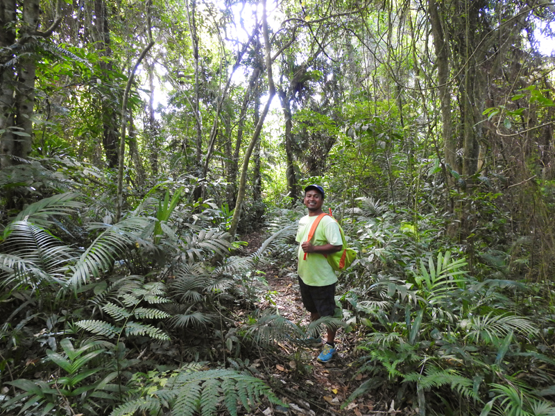 Forest Walk Guide Nyoman1