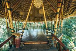 Bamboo Yoga Shala in the Treetops