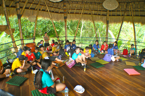 School environmental education