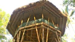 Bamboo yoga Bale_edited
