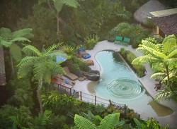 Living Natural Pool