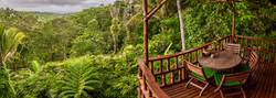 Jungle Bungalow view