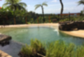 Natural%20Swimming%20Pool_edited.jpg