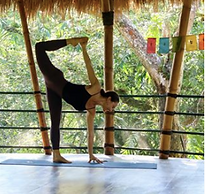 yoga in the treetops!