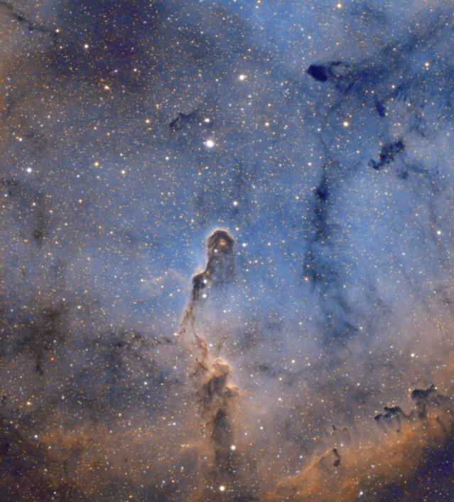 Elephant Trunk astrophotography