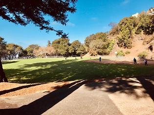 Park 12.jpg