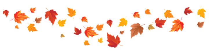 Fall_Leaves_PNG_Image.png