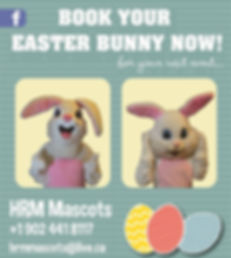 Easter bunny for rental or hire in halifax, Nova Scotia