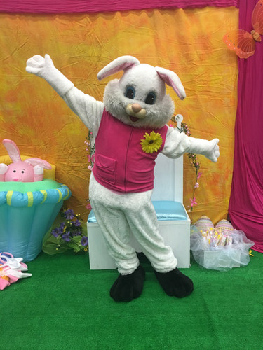 Easter Bunny with pink vest.jpg