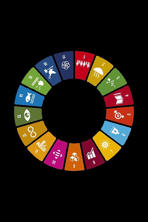 Verdensmaal-hjul-ikon-gennemsigtig-02.pn