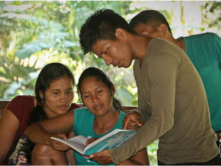 Peru Amazonas -genopretning og bevaring af regnskoven
