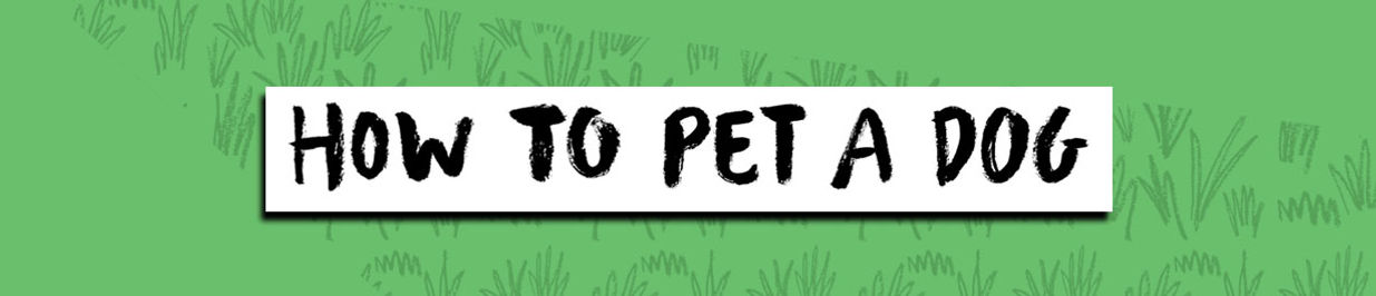 how to pet a dog banner.jpg