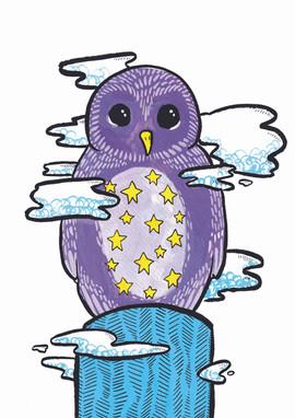 night owl a4.jpg
