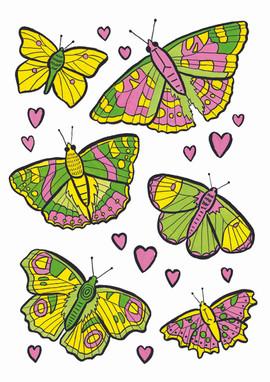 a4 butterflies.jpg