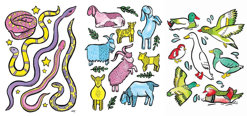 Kate Sharp Illustration kate.r.sharp Etsy snake goat duck animals painting