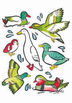 duck print a4.jpg