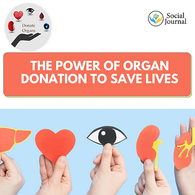 The power of organ donation to save lives