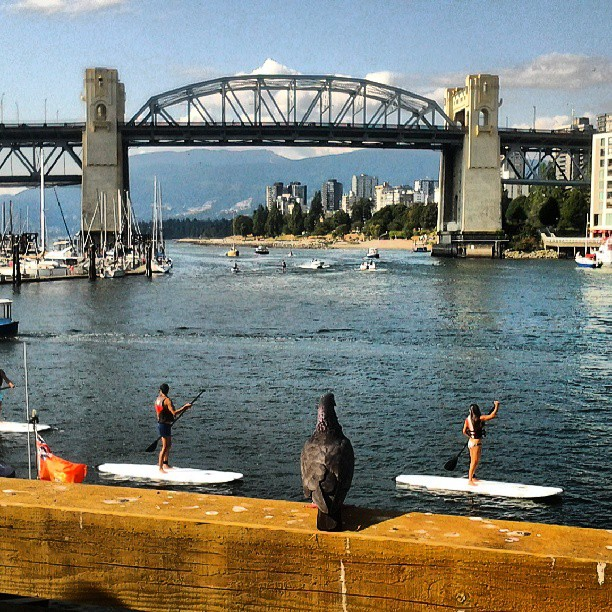 burrard st bridge