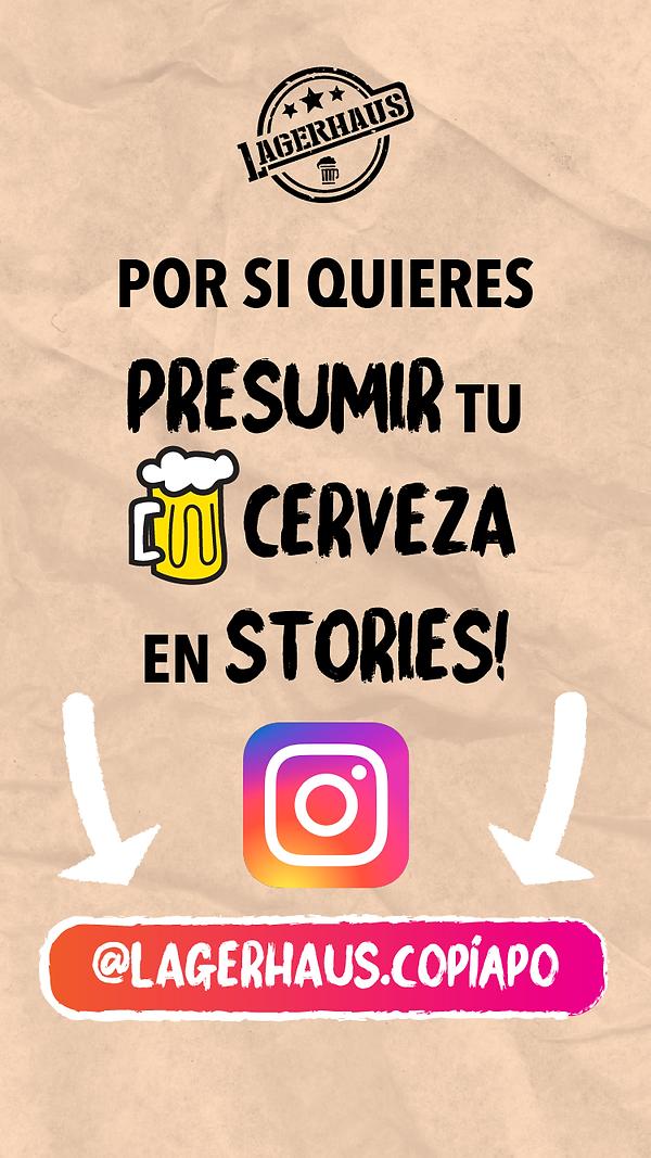 instagra-copiapo.png