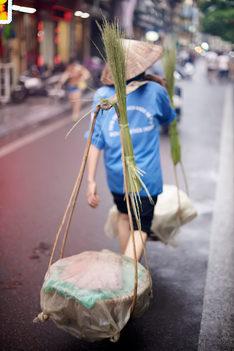 Hanoi_Rice_man.jpg
