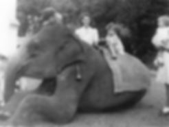 Doreen and Anne Kandy, Ceylon, 1946.jpg