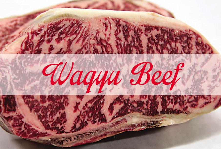 wagyu-beef1