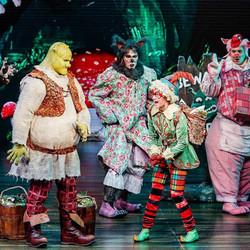 Shrek International Tour