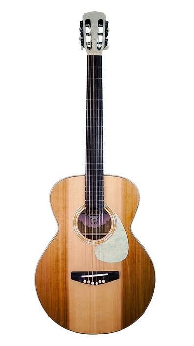 Guitar 1 (1).jpg