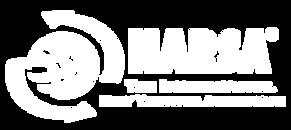 narsa_logo copy.png