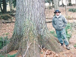 Michael Mannino standing by a tree.