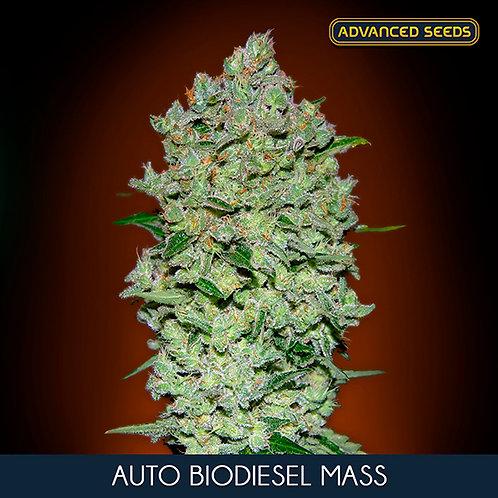Auto Biodiesel Mass