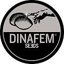 Dinafem logo.jpg