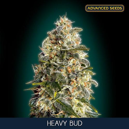 Heavy Bud
