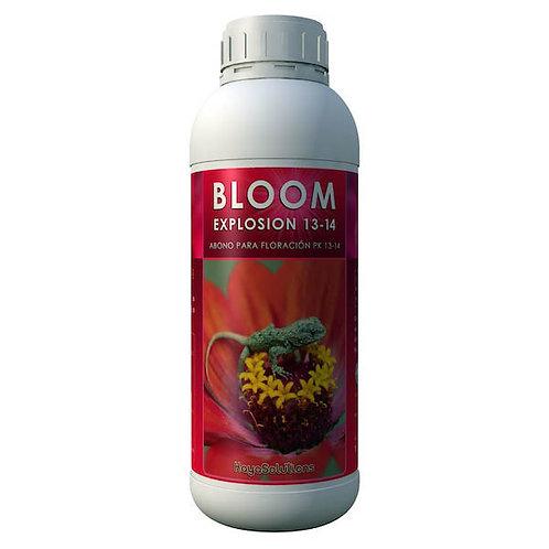 Bloom Explosion