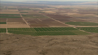 crop-fields-aerial-shot-of-several-field
