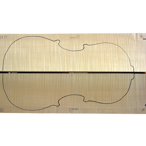 Flamed Maple | Cello back No.2