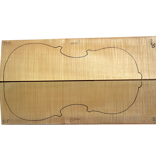 Flamed Maple | Cello back No.20