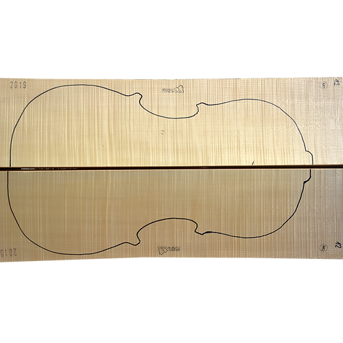 Flamed Maple | Cello back No.12
