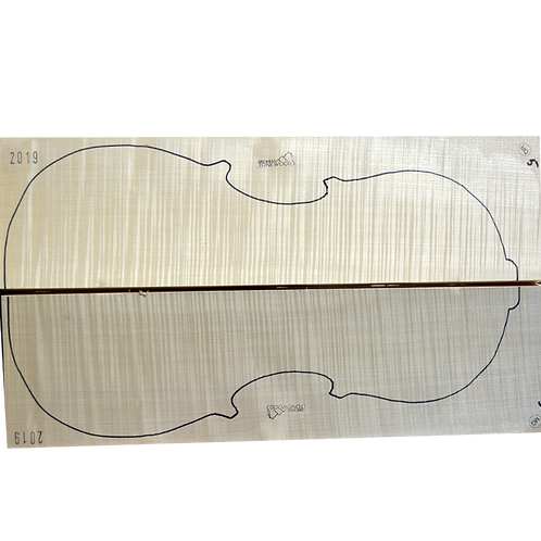 Flamed Maple | Cello back No.5