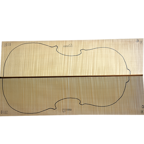 Flamed Maple | Cello back No.13
