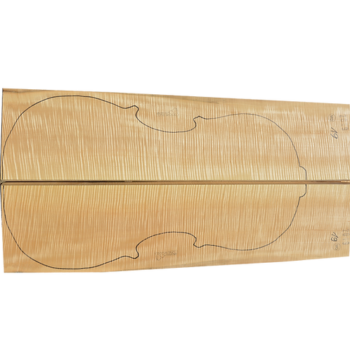 Flamed Maple | Cello back No.19