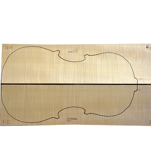 Flamed Maple | Cello back No.10