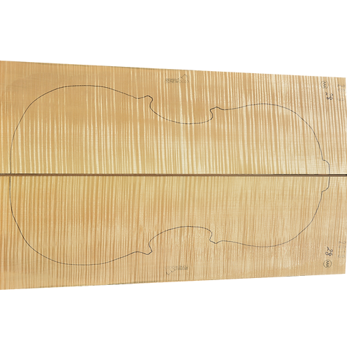 Flamed Maple | Cello back No.28