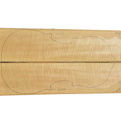 Flamed Maple | Cello back No.7