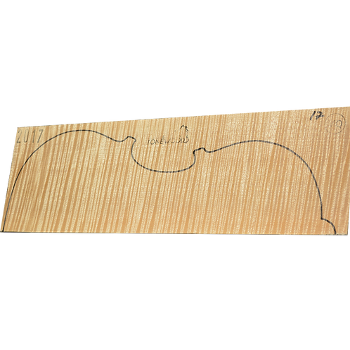 Flamed maple | Viola set No.17