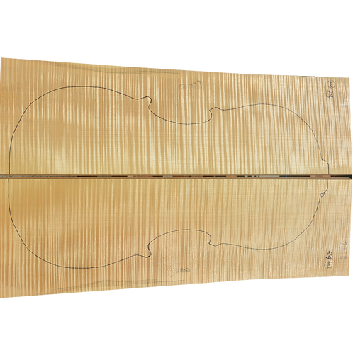 Flamed Maple | Cello back No.29
