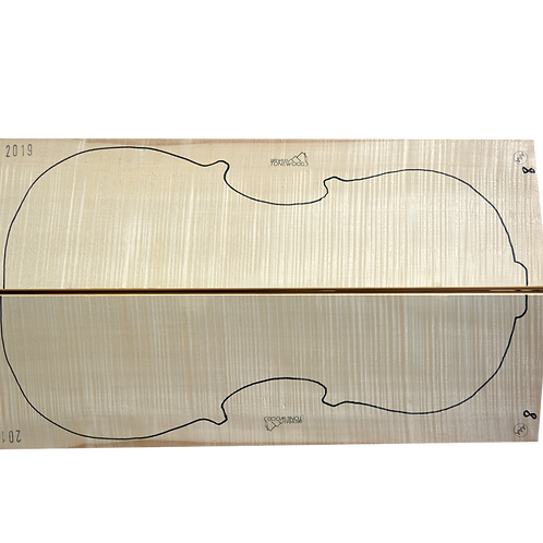 Flamed Maple | Cello back No.8