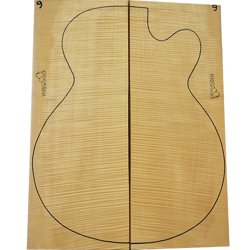 Archtop Jazz guitar back + sides No.9